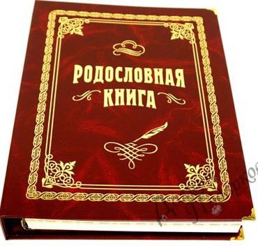 Родословная книга стандарт