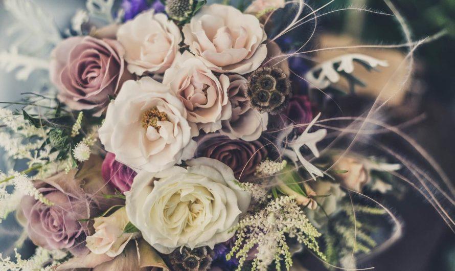 8 марта! Что дарить любимым женщинам?