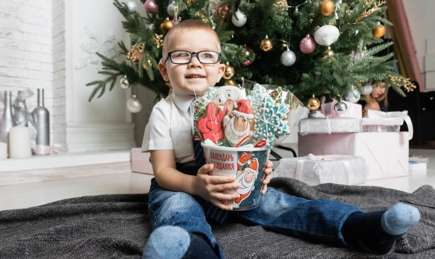 Какой подарок на Новый Год выбрать своему сыну?